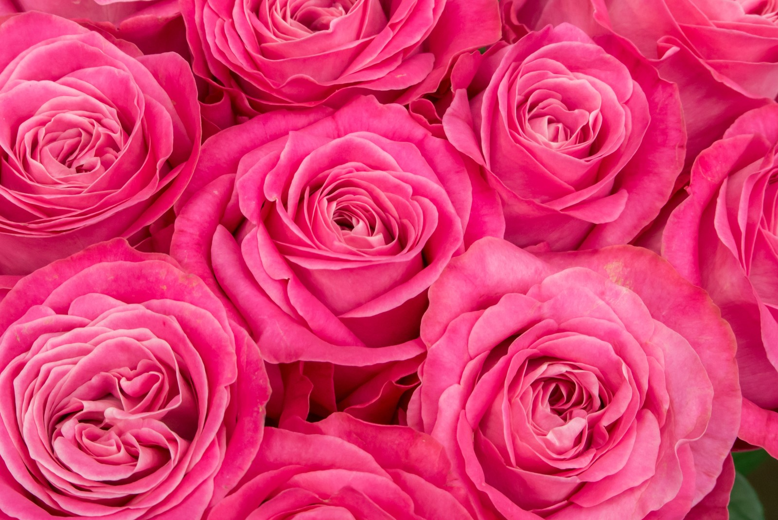 ピンクの呼吸♡
